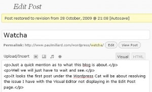 WordPress Visual Editor Missing